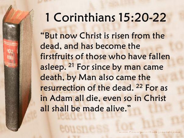 Jesus - adam all die