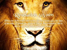 jesus - lion from tribe of judah