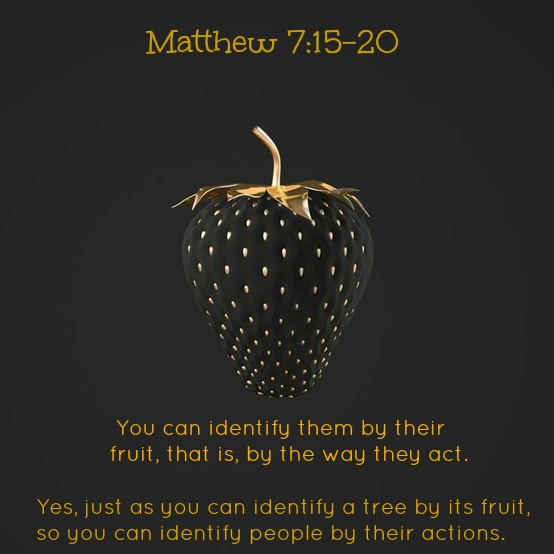 jesus - you will know them by their fruits or works
