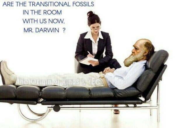 evolution - darwin on couch with psychologist are the transitional fossils in the room with us now