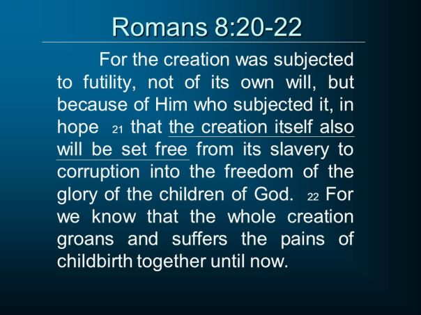 jesus - creation groans for redemption