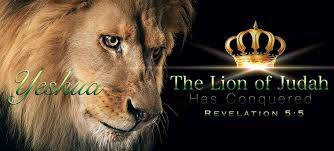 jesus - the lion from the tribe of judah has conquered