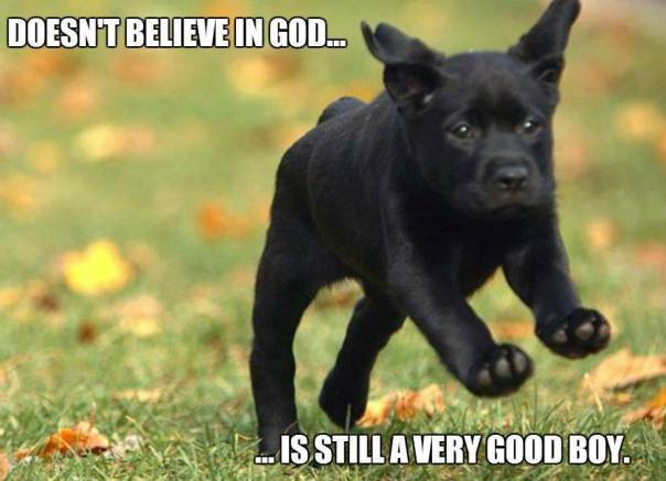 atheist logic - dog is a good boy has not god
