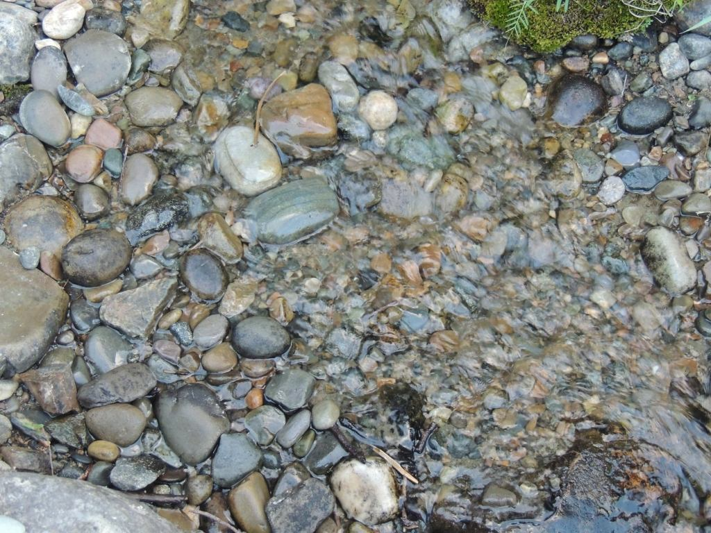 This image has an empty alt attribute; its file name is rv-river-rock.jpg